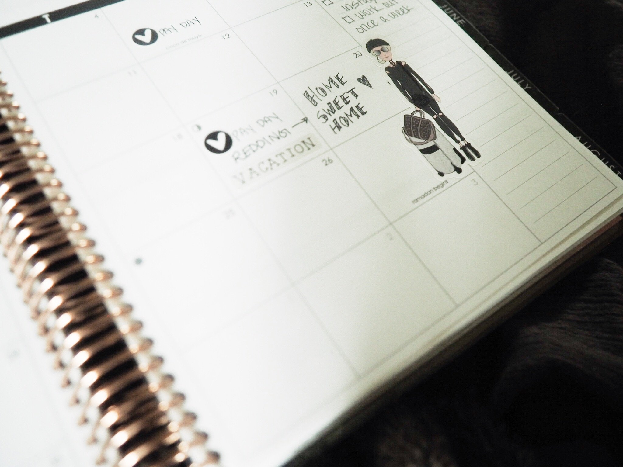 Use the Erin Condren Planner to organize your life!